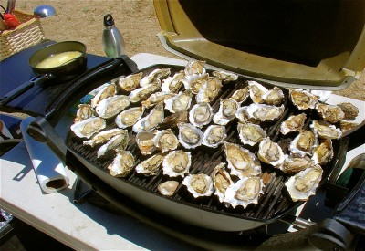 oysters_grill