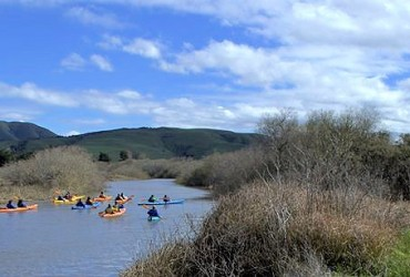 wetlandstopperd